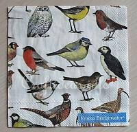 Paper Napkin with Birds