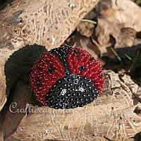 Sequins and Beads Lady Bug