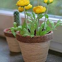 Terracotta Flower Pot Covered With Jute Cord
