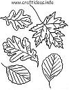 Autumn Leaves Craft Pattern