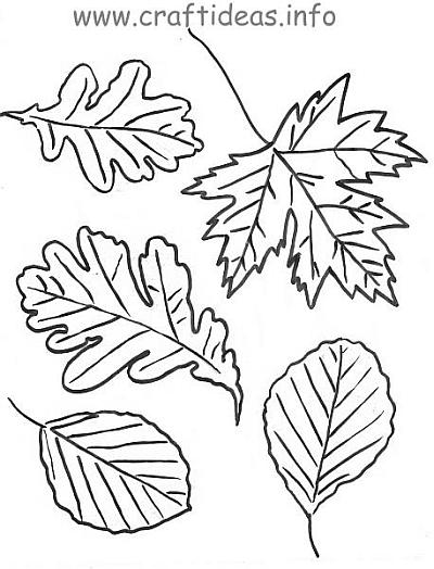 Free craft patterns for autumn leaves for Autumn leaf template free printables