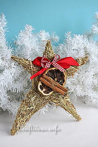 Basic Christmas Craft Ideas - Star Decoration Using Hay