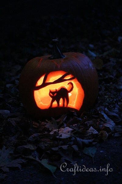 Carved Cat Halloween Pumpkin 2