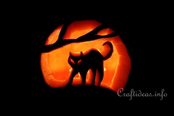 Carved Cat Halloween Pumpkin 3