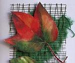 Fall Greeting or Birthday Card - Autumn Fallen Leaves