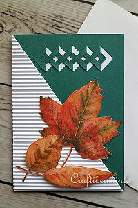 Fall Greeting or Birthday Card - Autumn Leaves