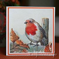 Fall Robin Greeting Card
