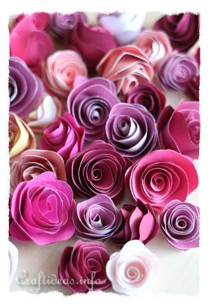 Paper Roses 300