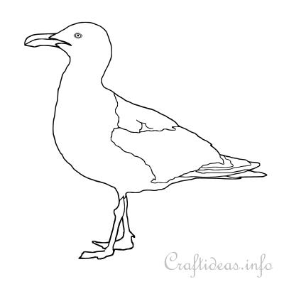 Seagull Coloring Page / Seagull Silhouette