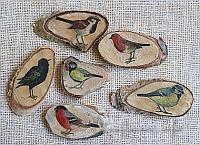 Wood Slice Refrigerator Magnets